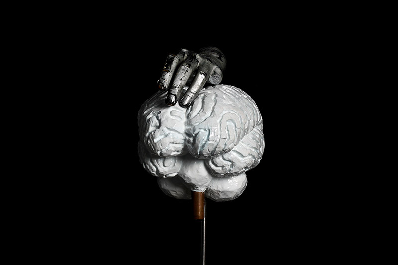 Brain from Brain series/Plaster, fiberglass, copper tube, acrylic and car paint with transparent color coating/ 27.18.135 cm/2012